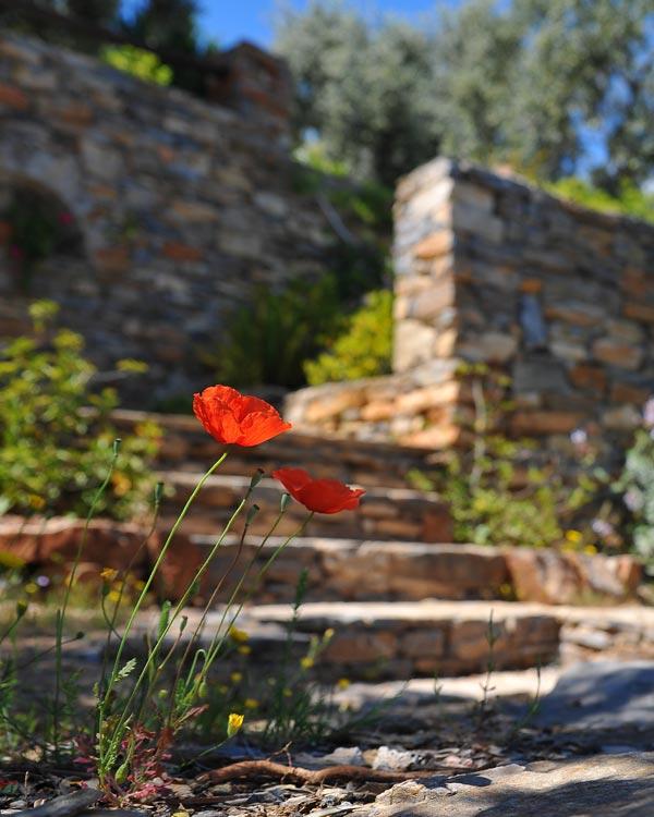 Gesamtkatalog – Mauersteine